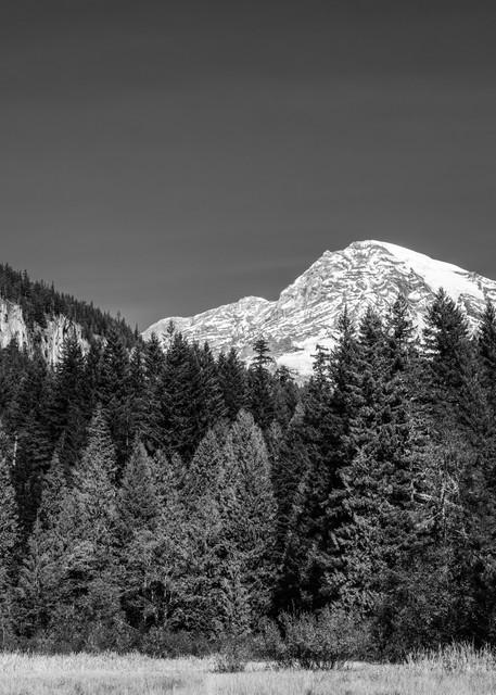 Mt. Rainier, Longmire Meadows, Washington, 2020