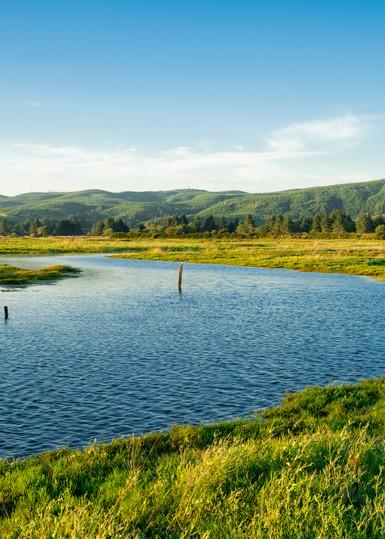 Willapa River Estuary, Washington, 2020