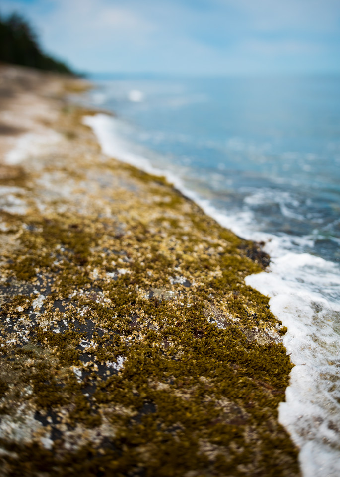 Shoreline Art | James Alfred Friesen