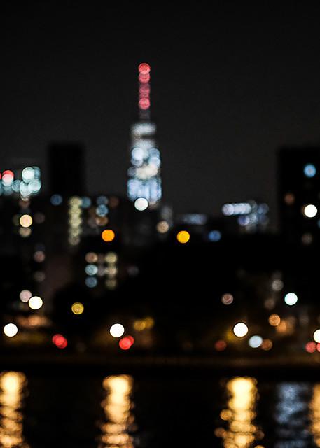 I Dream Of Gotham Photography Art | LenaDi Photography LLC