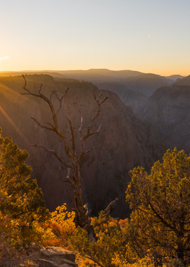 The Cayon Awakens Black Cayon National Park Colorado