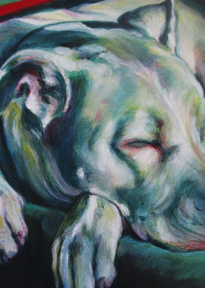 Asleep In The Sun Art | Lesley McVicar Art