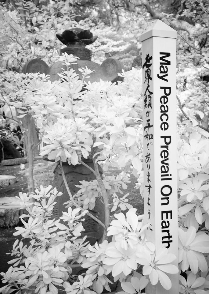 Peace Tokyo Photography Art | The World in Black and White