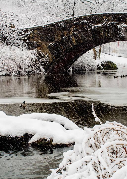 Gapstow Bridge, Central Park Photography Art | Ben Asen Photography
