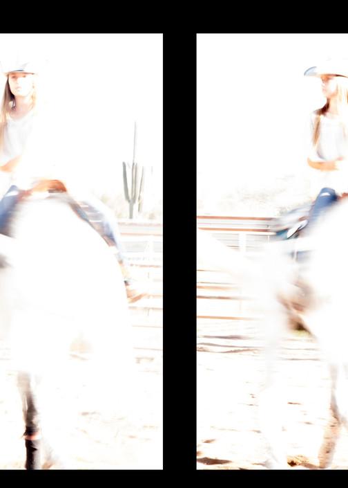 Horse Play Photography Art   Kathleen Messmer Photography