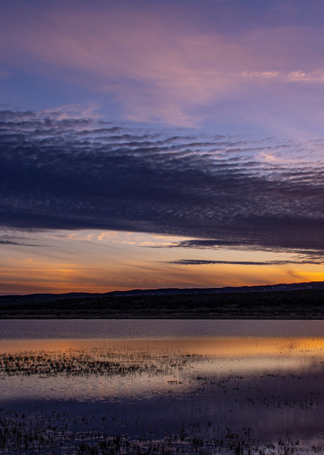 Dawn On The Bosque Photography Art | Kathleen Messmer Photography