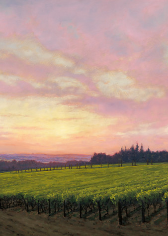 Terra E Cielo   Alloro Vineyard   48x96 Oils On Panel Art | Michael Orwick Arts LLC