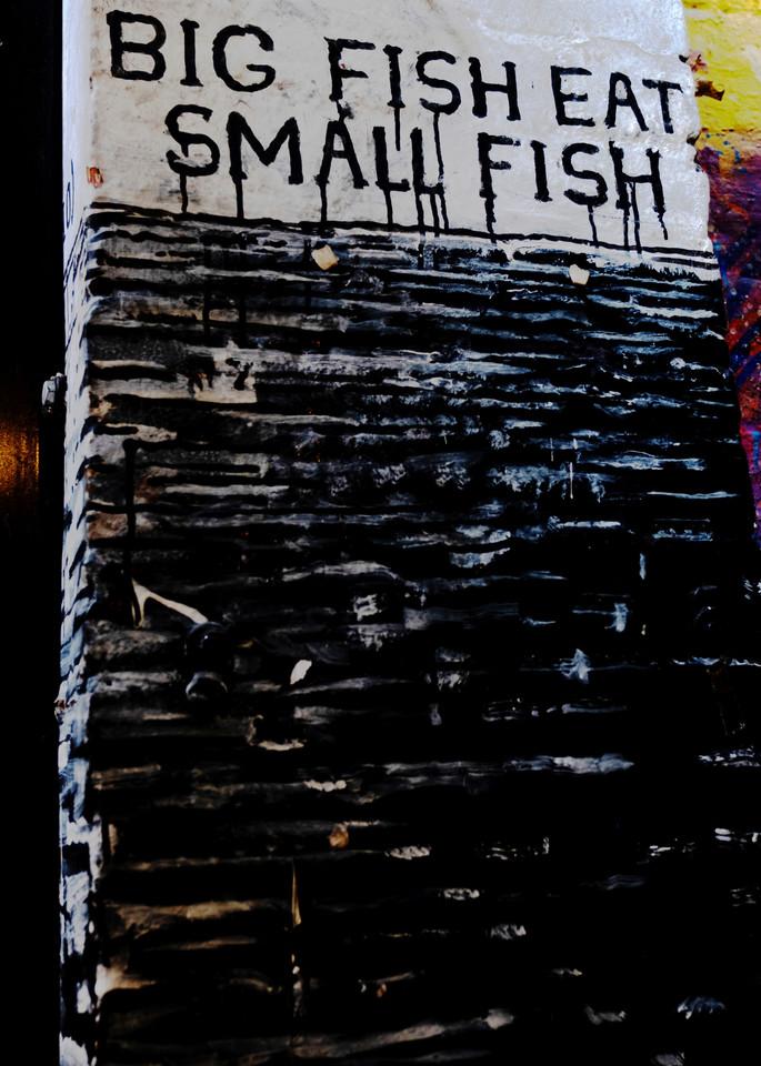 Big Fish Eat Small Fish Photography Art | LenaDi Photography LLC