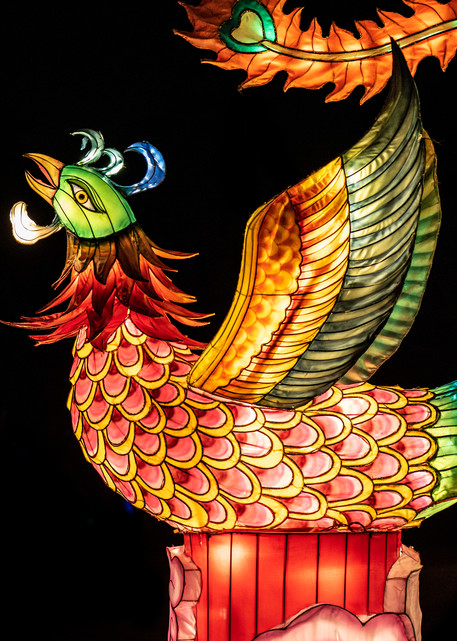 Chinese rooster lantern sculpture photograph