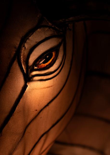 Closeup of a moose's eye lantern sculpture