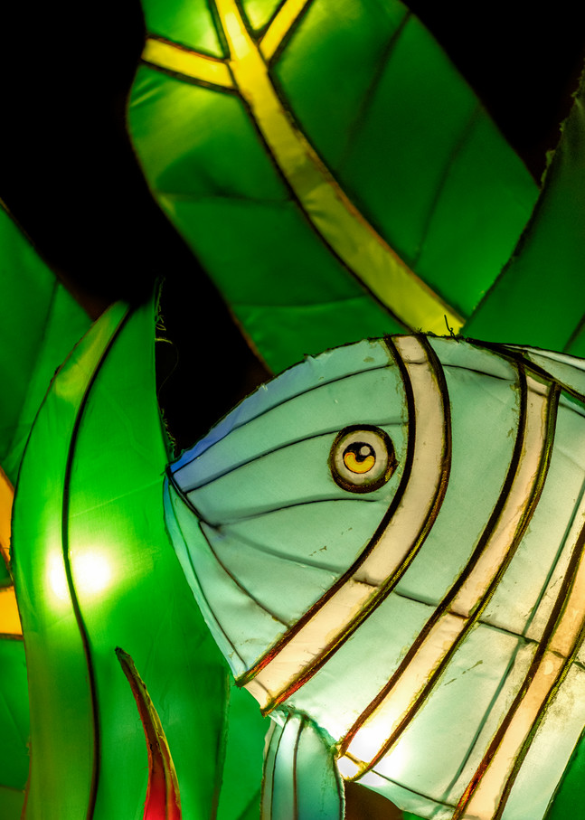 A fish in seaweed lantern sculpture