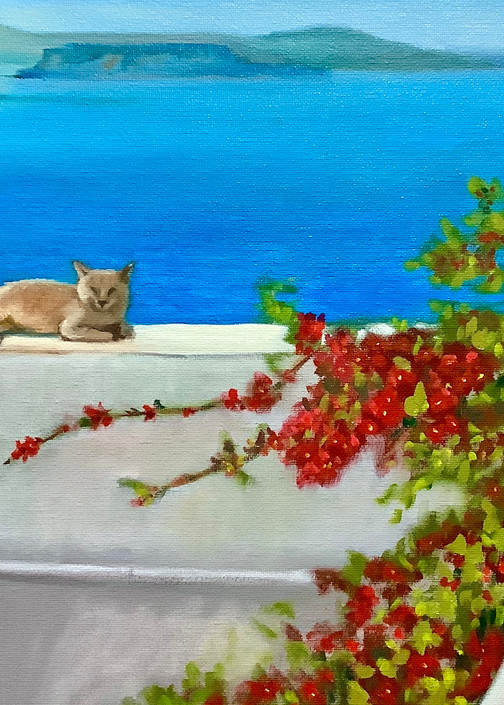 Cat on a wall by the Aegean Sea by Contemporary Artist Hilary J England