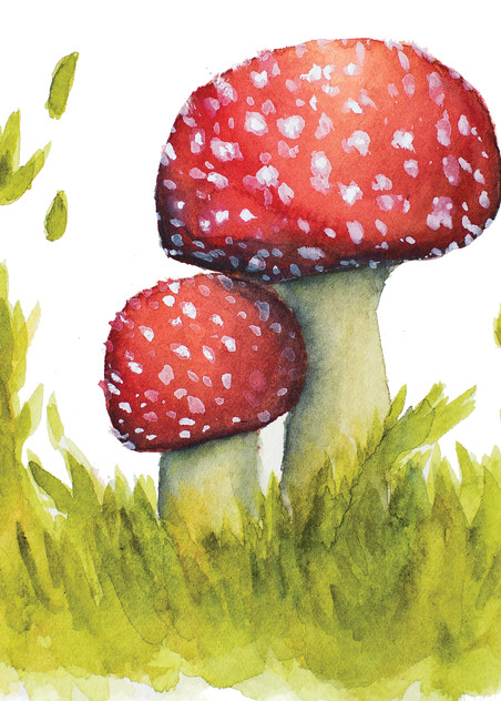Enchanted Meadow Fly Agaric  Art | Cool Art House - online art gallery with hip emerging artists. Collect cool art you can view on your own wall before you invest!