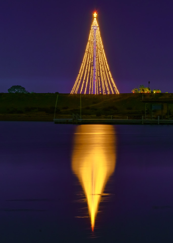Fiesta Island, San Diego Tree Of Lights Fine Art Print Art | McClean Photography