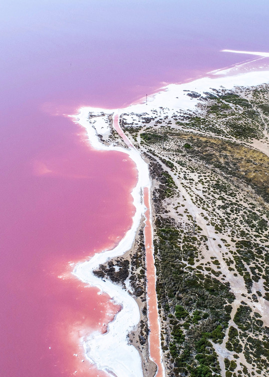 Laguna Salada de Torrevieja in Spain