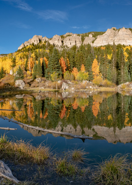 The Beaver Pond  Photography Art | Alex Nueschaefer Photography