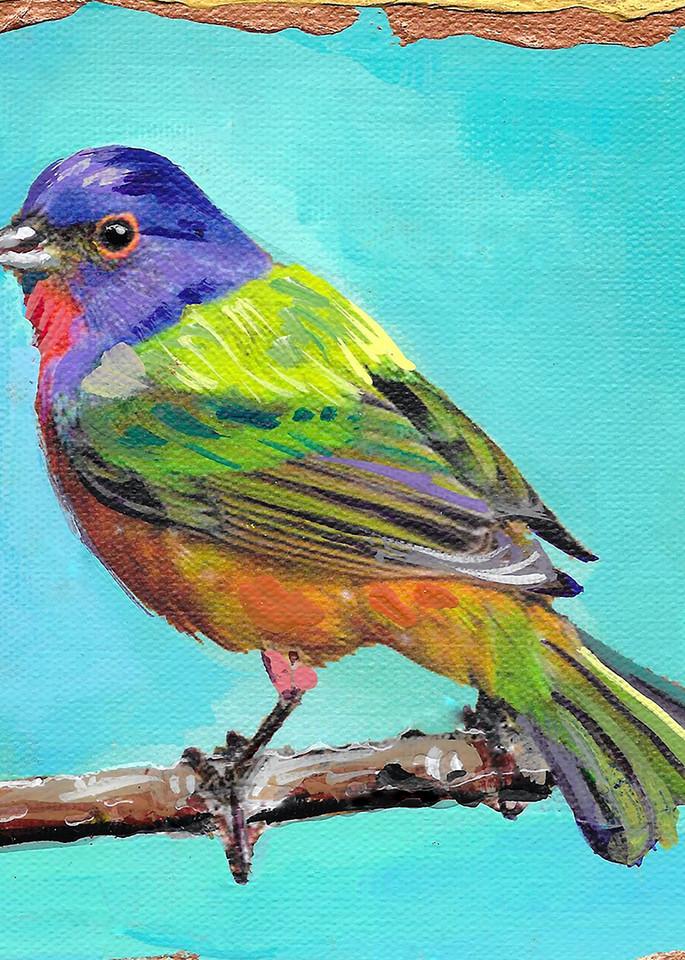 Painted Bunting Art   Channe Felton Fine Art