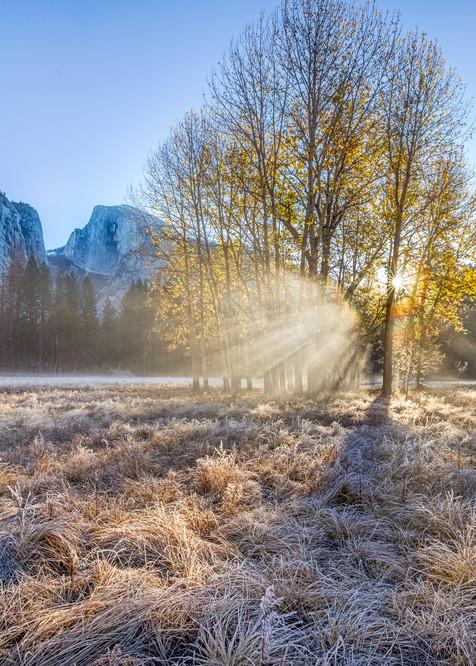 Autumn Sunrise Yosemite Art | The Carmel Gallery