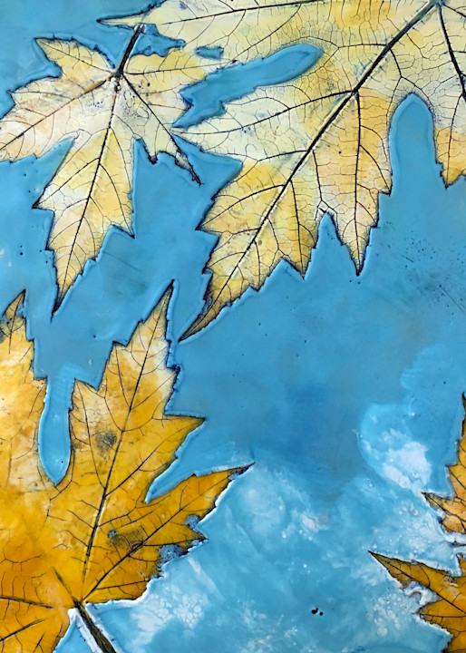 Maple Sky (Reproduction) Art | Eyes Aflame LLC