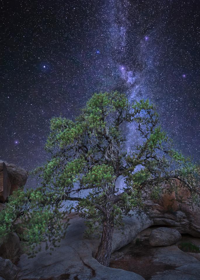 Solitude Photography Art | Josh Kimball Photography