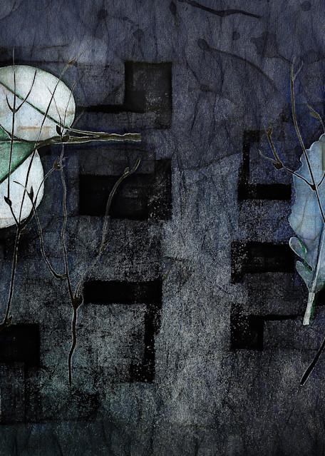 Leaves And Things Art | R.j.Ricci Art
