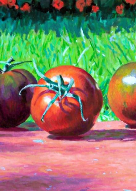 Heirloom Tomatoes, Cannes, France Art   Waif Mullins Art