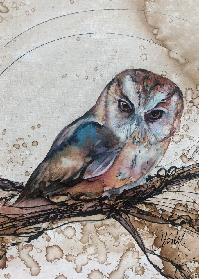 Barn Owl Art | Christy! Studios