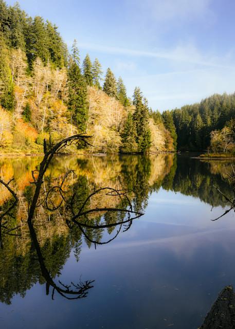 Autumn Morning, Lake Sylvia, Washington, 2020