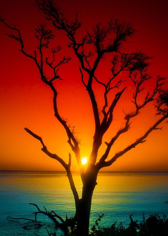 Suntree Photography Art | kramkranphoto