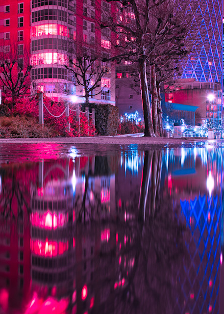 Pink Puddle Place Art | Martin Geddes Photography