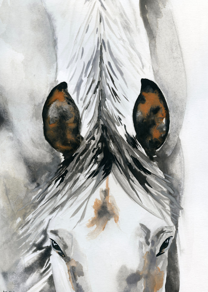 "Giclee Print ""White Horse Head Down"" portrait by April Moffatt"