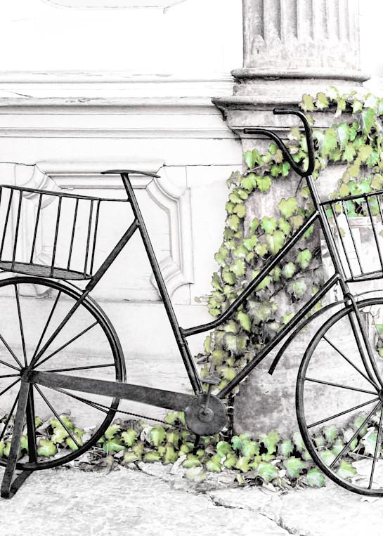 Useless For Transport Art | Light Pixie Studio