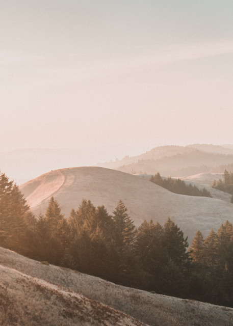 The Road Not Taken - Golden hills in California at sunset