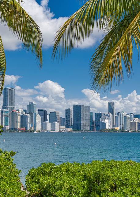 Miami Vice Photography Art   kramkranphoto