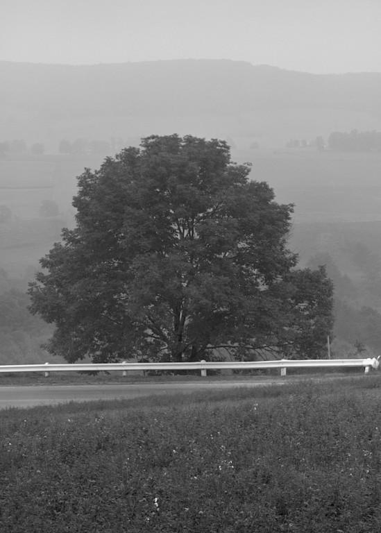Foggy Day Near Millerton, New York 1972 Photography Art | Rick Gardner Photography