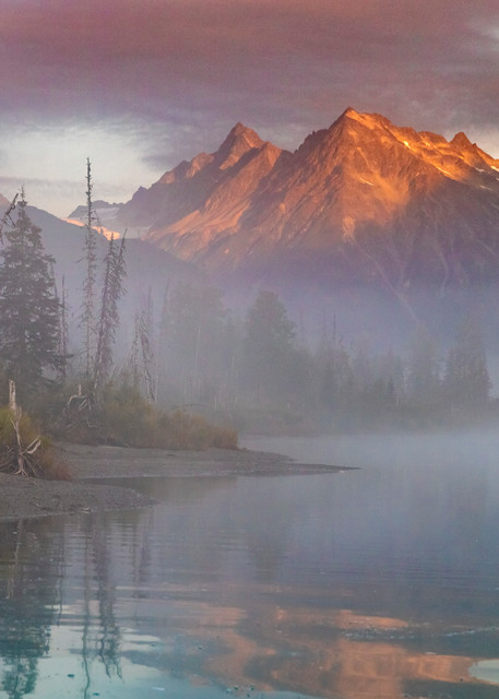 Alaska Brown bear on Crescent River in Lake Clark National Park in fog during sunrise, Alaska.  Chigmit Mountains.  Photo by Jeff Schultz/  (C) 2020  ALL RIGHTS RESERVED