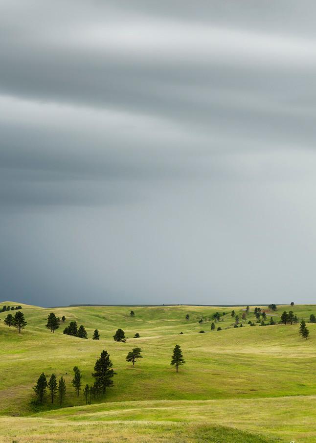 Constance Mier Photography - Fine Art Prints from South Dakota's Black Hill