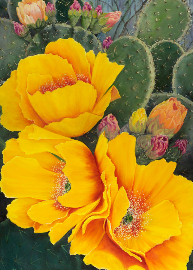 Cactus Blooms Art | Marsha Clements Art
