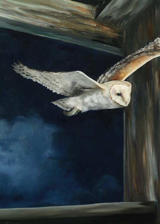 Night Flight Art | Marsha Clements Art