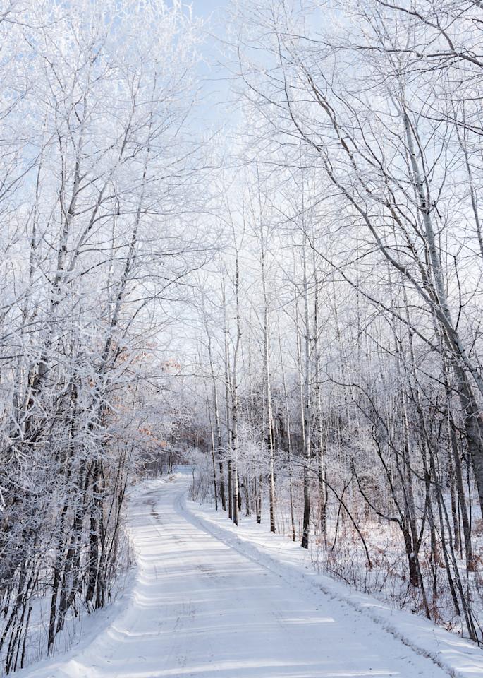 Winter Road Art   studio176