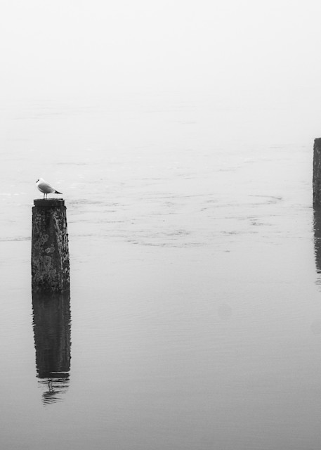 Thames Meditation