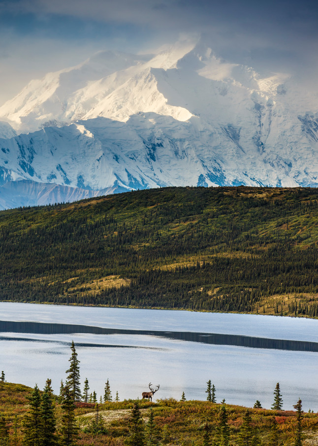 Caribou Ridge and Denali