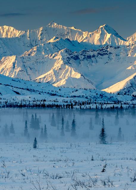 Tahneeta Winter Fog