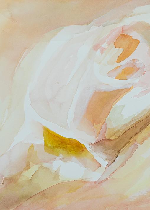 Shell Art   ArtByPattyKane