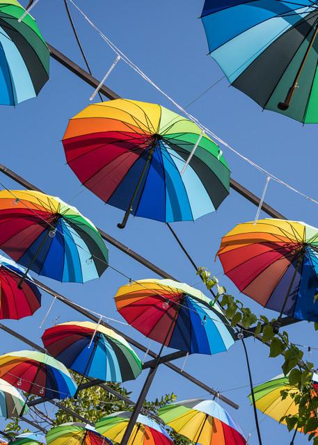 Umbrella Street, Puerto Plata, Dominican Republic