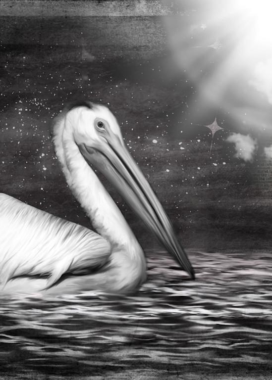 Seen By Starlight Art   Karen Hutton Fine Art