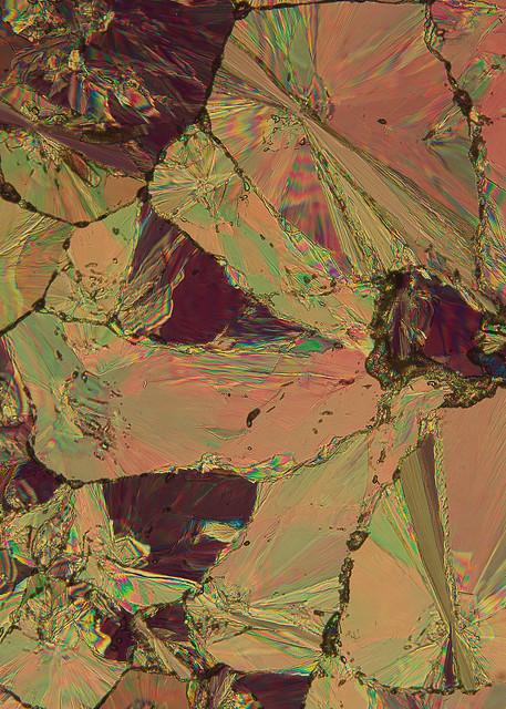 Wild Granite Rose (Hippuric Acid) Art   Carol Roullard Art