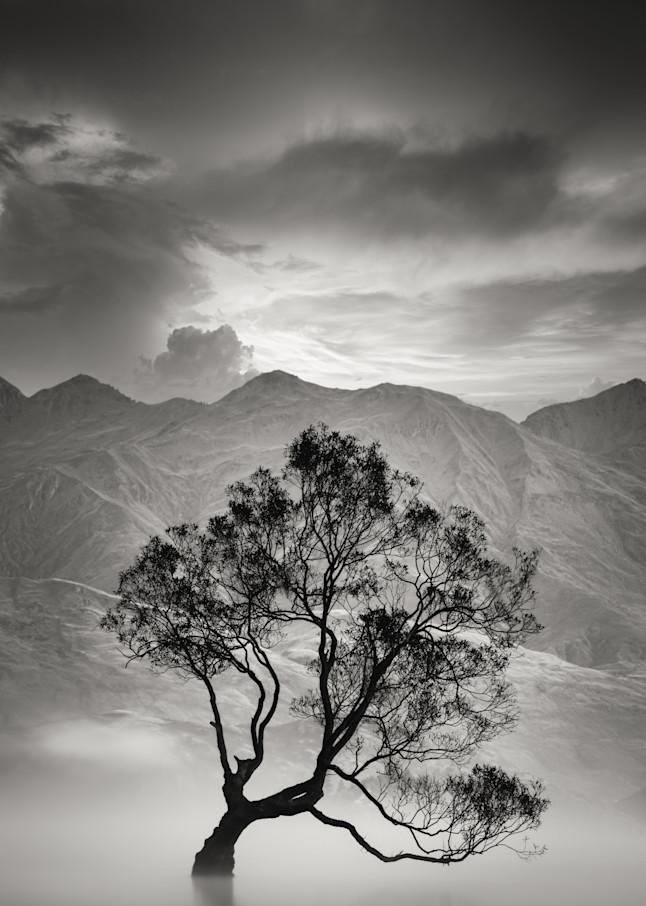 Harv Greenberg Photography - Finding Inspiration