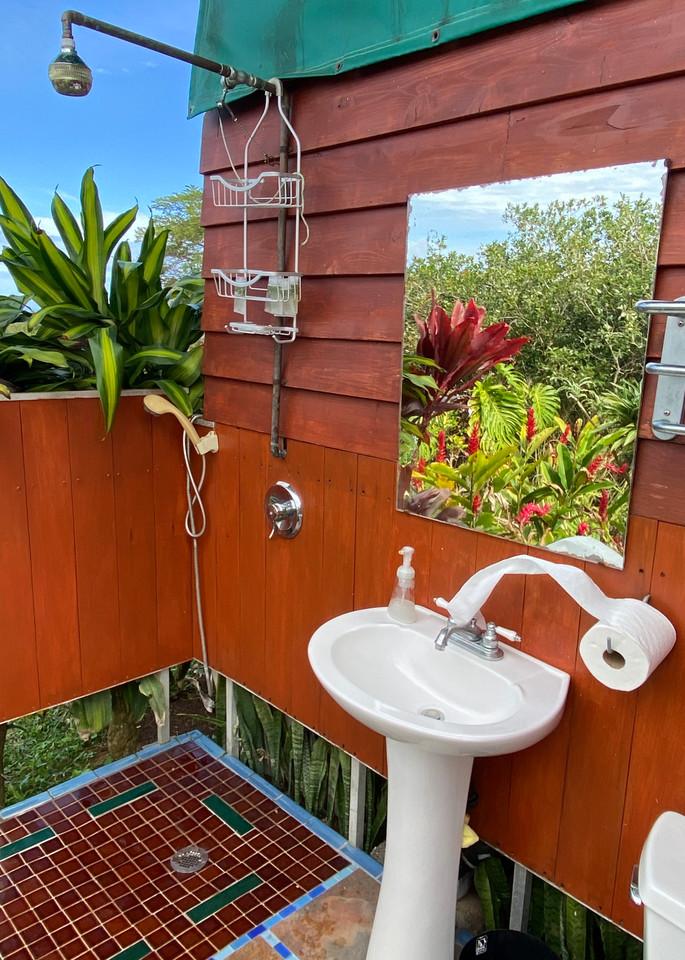 Breezy In The Tropics Photography Art   Visionary Adventures, LLC