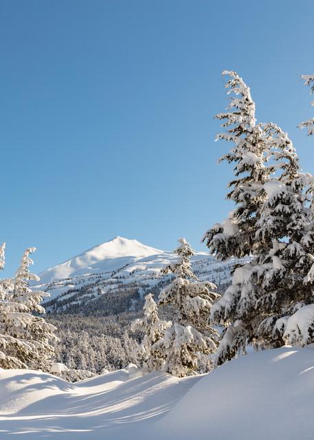 Deep snow in late winter Alaska